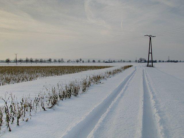 Winter 2010 09